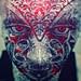 343 Facial Digression by dracorubio