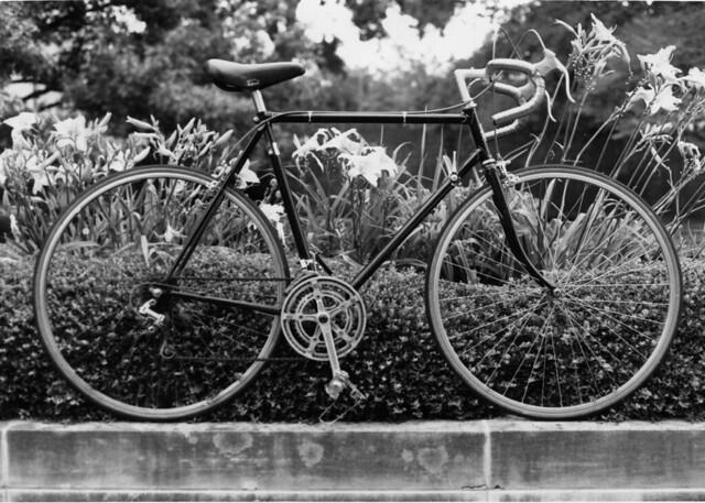 bikes_1