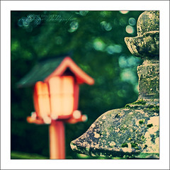 When the Evening Fell on the Lantern