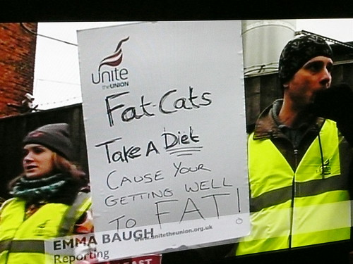 Fat-Cats Take A Diet Cause Your Getting Well To Fat