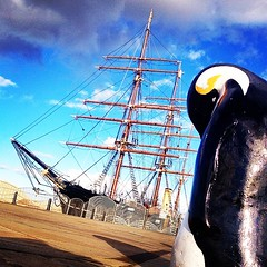 The penguin's not up for it but a nice evening for a stroll to the Social Media Surgery at Dundee Library all the same...