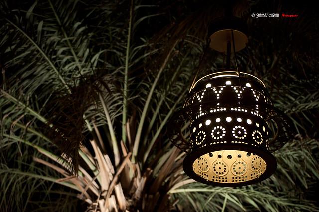 صور فوانيس رمضان 2019 اجمل واحلى خلفيات بطاقات كروت صور فانوس رمضان متحركة 2020 5265668058_51b3dbb3fd_z.jpg