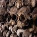 Catacombes Skulls by Crazy Ivory
