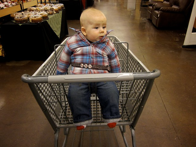 First Time in the Shopping Cart!