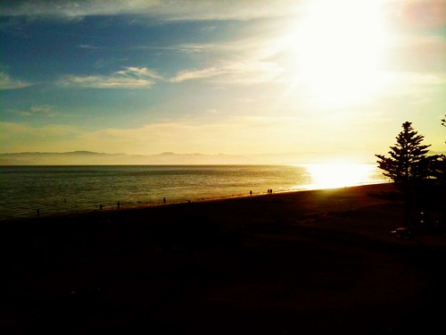 camera sea newzealand sun tree yellow set scenery unhappy 2011