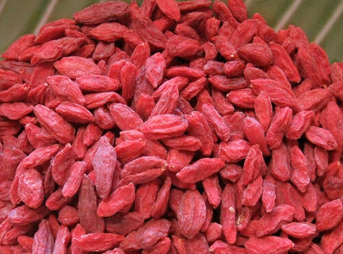 Goji Berries - SurvivalBros.com Superfood