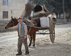 mule(0.0), ox(0.0), vehicle(1.0), pack animal(1.0), coachman(1.0), horse(1.0), horse harness(1.0), horse and buggy(1.0), carriage(1.0), cart(1.0),