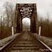 Westbound Rails 8/365