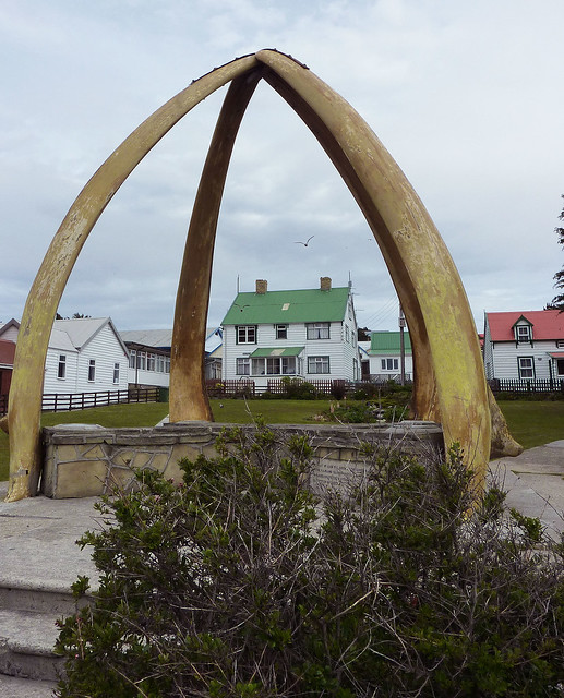 arch russian whale - photo #45