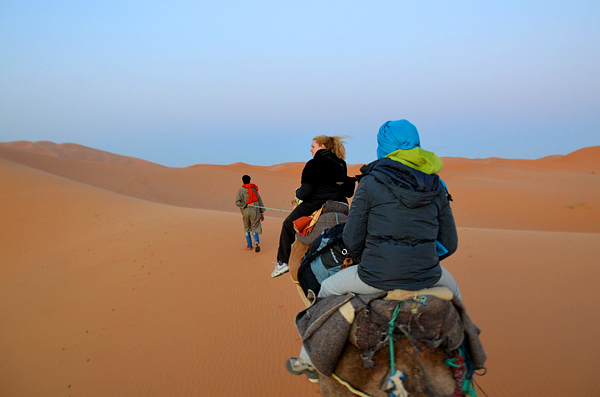 Atardecer en el desierto a camello