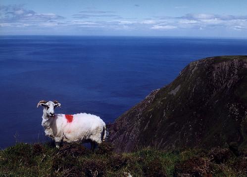 Irsko – tam, kde se narodila zelená