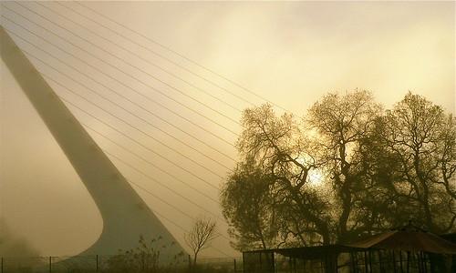 fog norcal reddingca sundialbridge activeassignmentweekly aawadventure