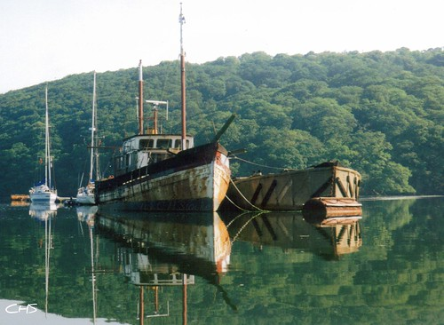Woodreach, Truro River (River Fal) by Stocker Images