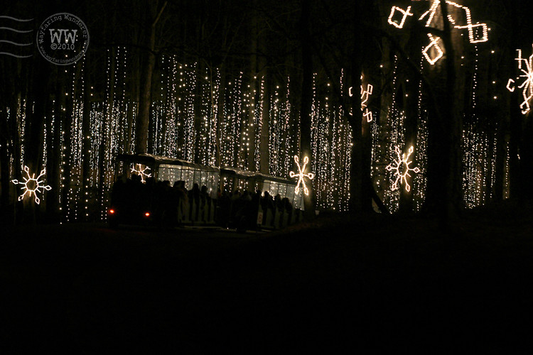 Wayfaring Wanderer Fantasy In Lights Callaway Gardens Ga