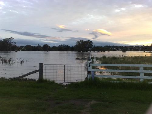 floods condamine condamineriver
