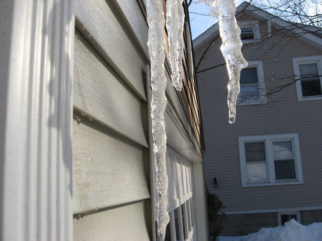 Photo:Icicles By cartoongoddess