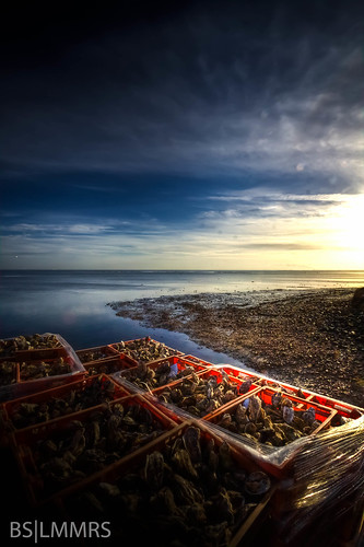morning netherlands sunrise nederland wideangle zeeland oysters lightroom canon50d