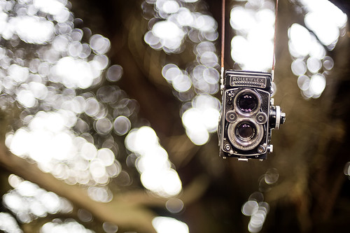 Happy Bokeh Wednesday!