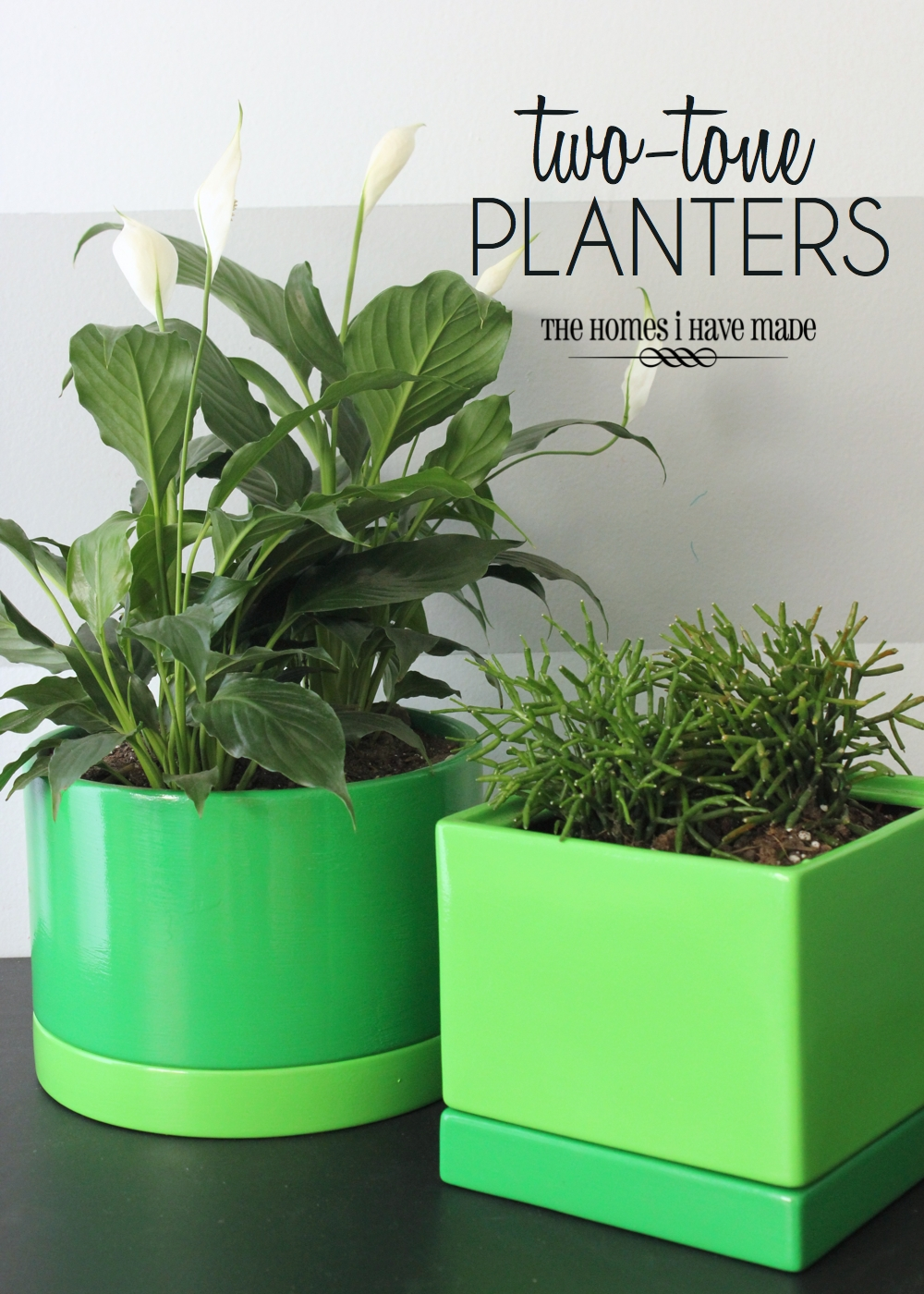 Green Planters-013