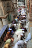 Motion of spiritual energy [Saidpur - Nilphamari, Bangladesh] by - Ariful H Bhuiyan -