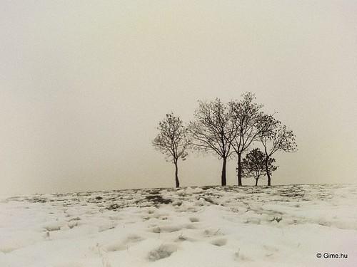 city blackandwhite nature landscape photography photo természet táj város feketefehér fotó fotográfia fénykép daarklands