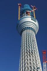 20101205 Tokyo Sky Tree / 東京スカイツリー
