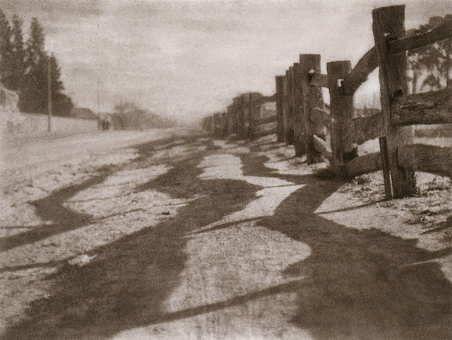 Shadow Play, by Harold Cazneaux ca. 1919