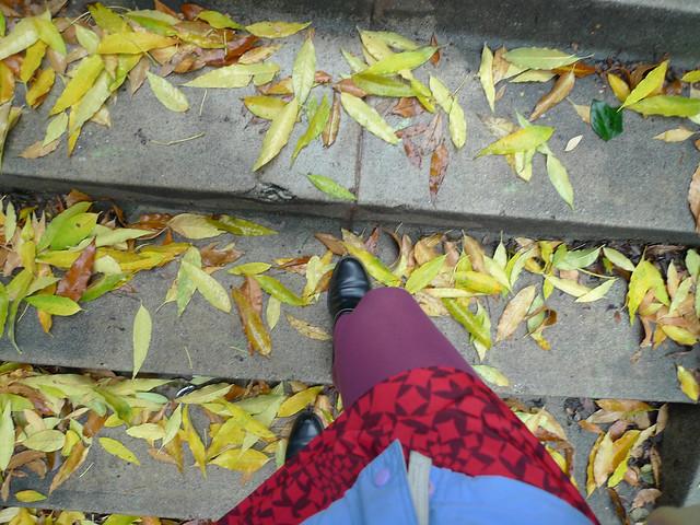 Fall, finally
