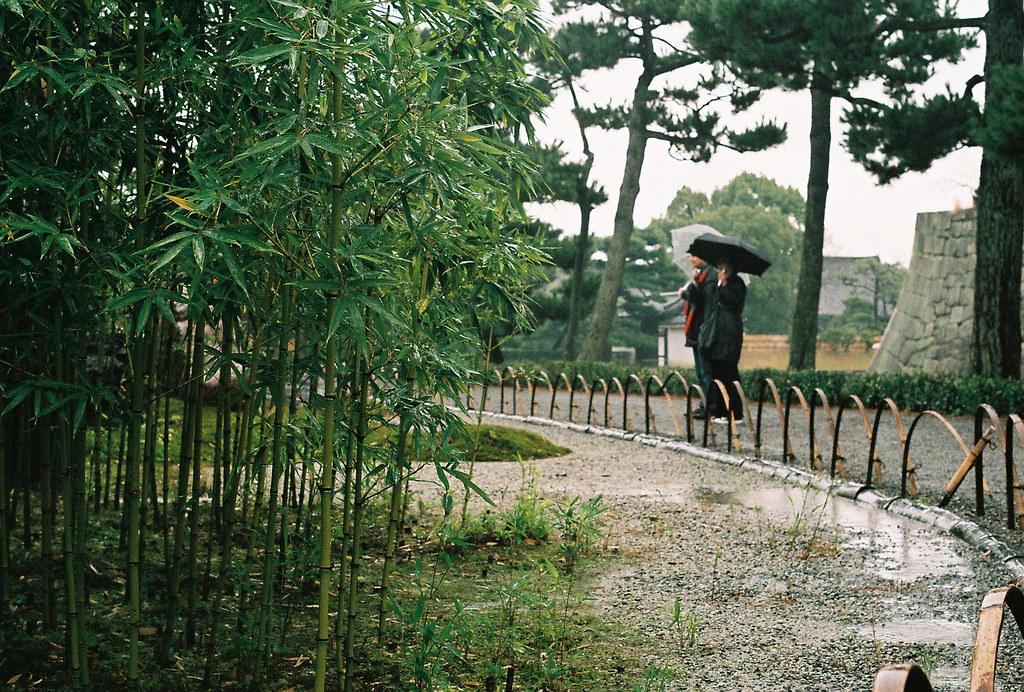 rain in the garden of the nightingale floor castle