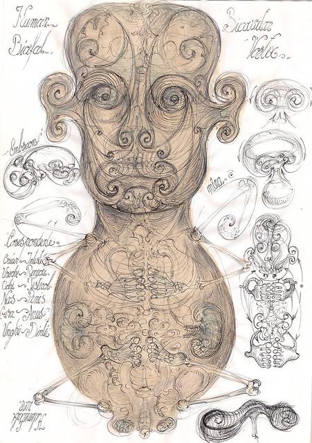 Human vortex