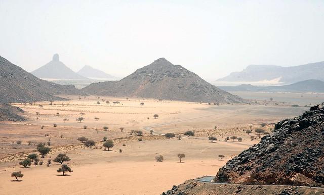 Researchers make bricks from waste, desert sand - Green