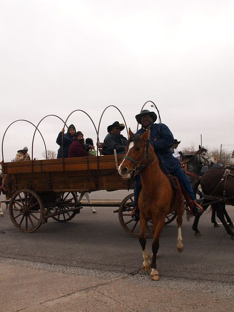 Houston Texas Martin Luther King Jr Trail Ride Parade