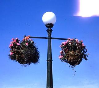 Victoria BC lamppost