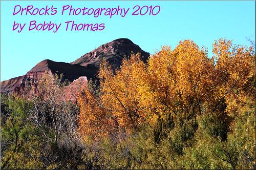 Palo Duro Canyon - 11-14-2010 (26)