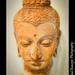 Bust Gautam Buddha Statue, 1 CE, Gandhara Empire