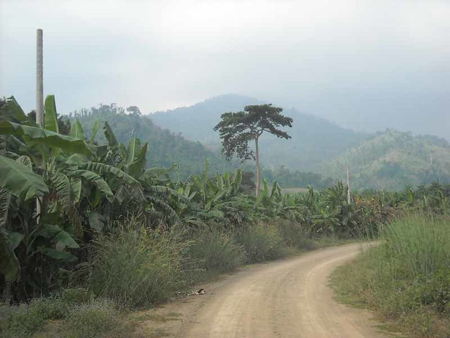 Pailin Cambodia  city images : Rural scenery, Pailin, Cambodia | Flickr Photo Sharing!