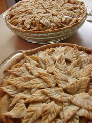 whole grain(0.0), pecan pie(0.0), produce(0.0), pie(1.0), pot pie(1.0), baked goods(1.0), food(1.0), dish(1.0), dessert(1.0), cuisine(1.0), apple pie(1.0),