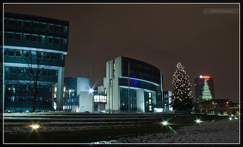 Weihnachten am Landtag NRW