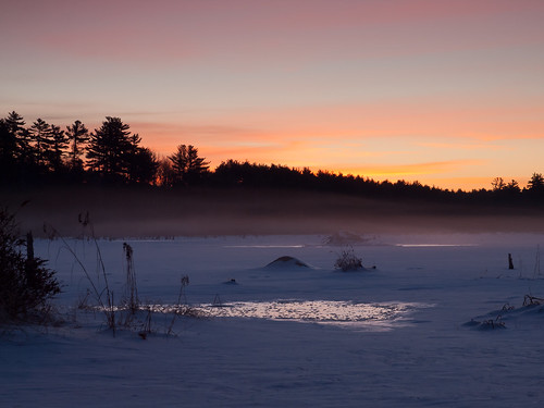 morning trees winter sky snow cold ice water grass clouds forest sunrise landscape dawn frozen pond woods nh marsh beaverlodge beaverpond