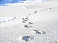 Walking on the white rice-sand beach