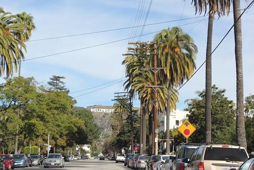 LA January 058