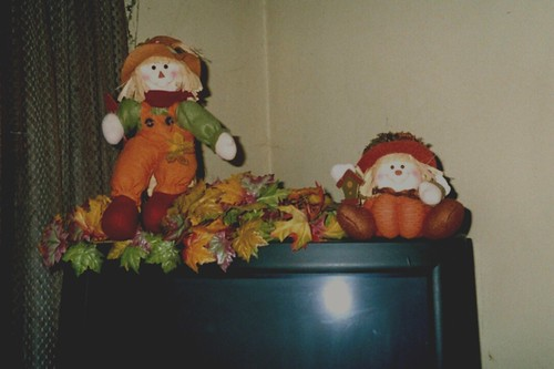 Autumn TV Decoration