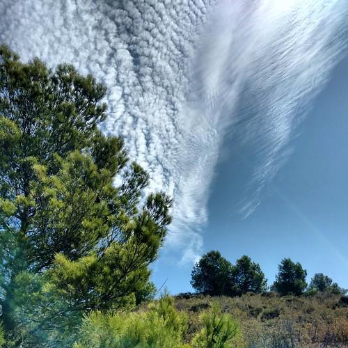 Unusual clouds ?