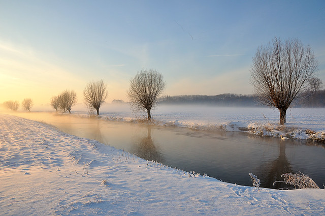 Brabants winterlandschap 2010 - Dutch winter landscape 2010
