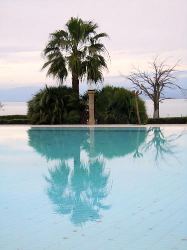 reflection tree hotel december palm greece monday spa 2010 galini kamena vourla diaryphoto fthiotida dec2010 mdpd2010 mdpd201012 27dec2010