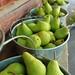 Elephant Island Pears