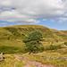 Small photo of Sarn Hellen - Brecon Beacons