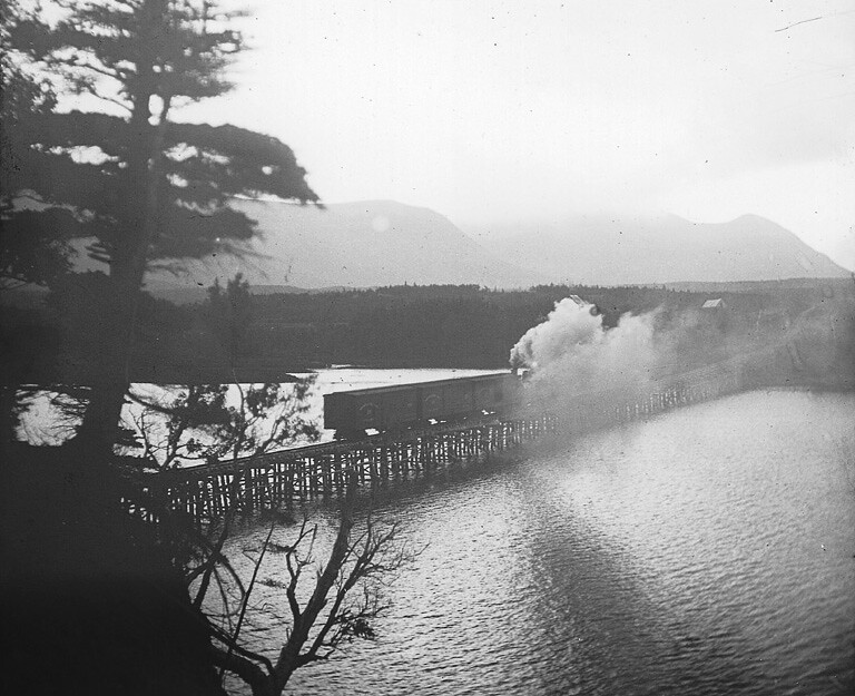 Railway trestle over Codroy River, NF, about 1900