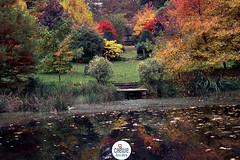 Arboretum de la Sédelle à Crozant - Creuse