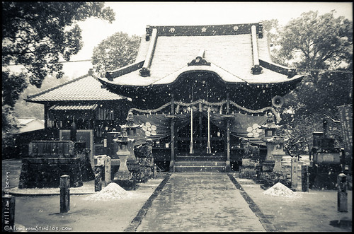 Snow on the shrine
